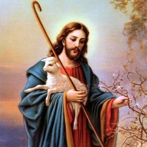 Tuyển Ca Chúa Chiên Lành - Nhiều Ca Sĩ