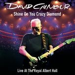 shine david gilmouron you crazy diamond (parts 1-9) (single)  - david gilmour