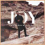 joy (live) (single) - vashawn mitchell