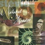 natural wonder (live/1995) - stevie wonder