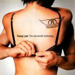 young lust: the aerosmith anthology (cd2) - aerosmith