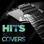 hits: acoustic covers - v.a
