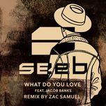 what do you love (zac samuel remix) (single) - seeb, jacob banks