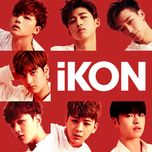 ikon single collection - ikon