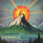 we still move on dance floors - the strumbellas