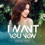i want you now (single) - huong tram