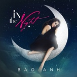 in the night (single) - bao anh