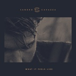 what it feels like (single) - sandro cavazza