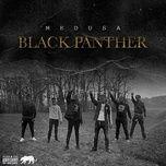 Nghe và tải nhạc Black Panther (Single) Mp3 hay nhất