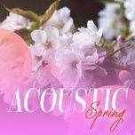 acoustic spring - v.a