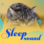 sleep sounds - v.a