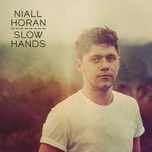 slow hands (single) - niall horan