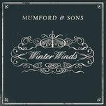 winter winds (single) - mumford & sons