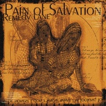 remedy lane - pain of salvation