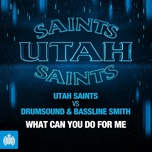 what can you do for me (extended mix) (single) - utah saints, drumsound, bassline smith