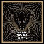 true color / 本色 - black panther