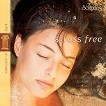 stress free - dan gibson