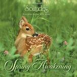 spring awakening - dan gibson