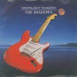 moonlight shadows - the shadows