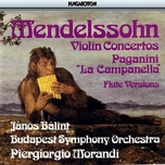 violin concertos on flute - mendelssohn, paganini