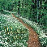 woodland flute - dan gibson