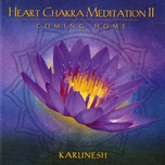 heart chakra meditation ii coming home - karunesh