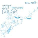 zen pause - thierry david