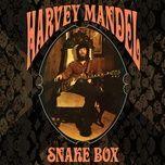 the snake - harvey mandel