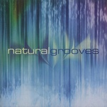 natural grooves - dan gibson