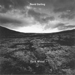 dark wood - david darling