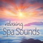 sounds of spa chill - v.a