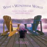 what a wonderful world (jazz) - dan gibson