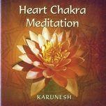 heart chakra meditation - karunesh
