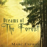 dreams of the forest - marc enfroy