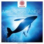 entspanntsein - meeresklange (entspannende musik mit wal- und delphingesangen) - davy jones