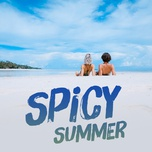 spicy summer - v.a