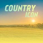 country icon - v.a