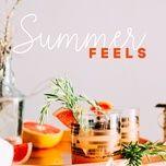summer feels - v.a
