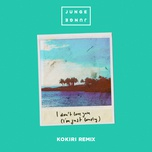 i don't love you (i'm just lonely) (kokiri remix) (single) - junge junge