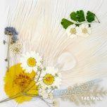 white night - tae yang (bigbang)