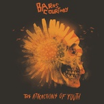 never let you down (single) - barns courtney