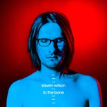 to the bone - steven wilson