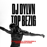 top bezig (single) - dj dylvn