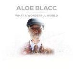 what a wonderful world (single) - aloe blacc