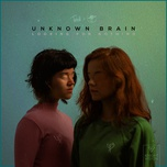 looking for nothing (single) - unknown brain