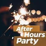 after hours party - v.a