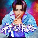 i choose the road / 我选择的路 (single) - ngo diec pham (kris wu)