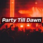 party till dawn - v.a