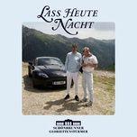 lass heute nacht (single) - schonbrunner gloriettensturmer
