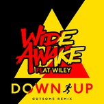 down up (gotsome remix) (single) - wiley